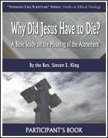 Why Did Jesus Have to Die? - Participant A-6010