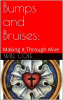 Bumps and Bruises: Making It Through Alive B-C100